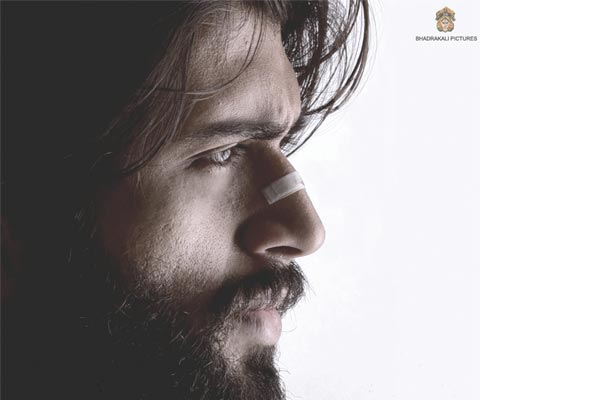 Arjun Reddy Two Weeks Total Collections