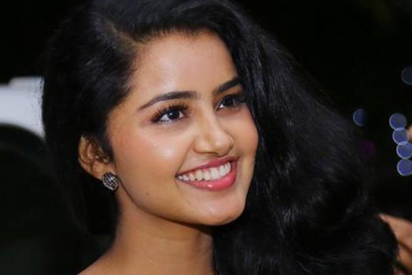 Sharwanand to romance Mallu beauty Anupama Parameshwaran