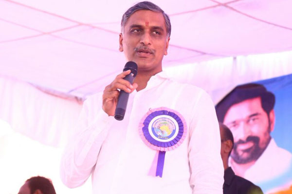 Congress-TDP alliance a necessity for CBN, says Harish Rao