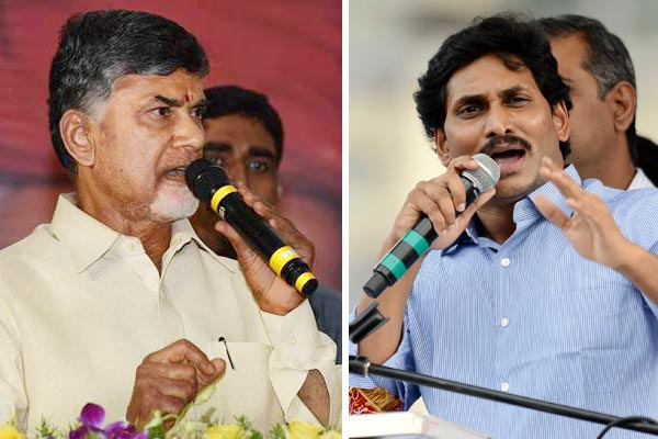 MLC polls turned into a `proxy war' between Chandrababu, Jagan in Kadapa