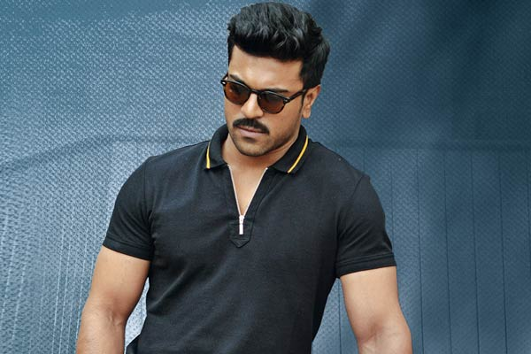 Charan's Dhruva Overseas Profit Loss Statement