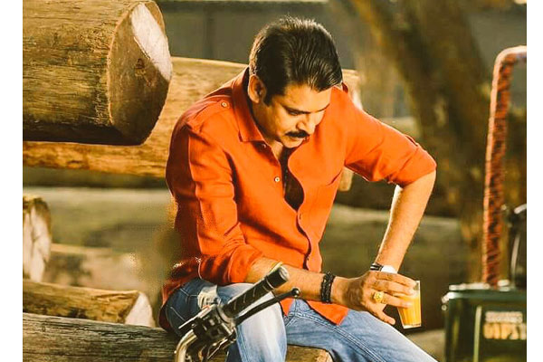 Katamarayudu first week collections