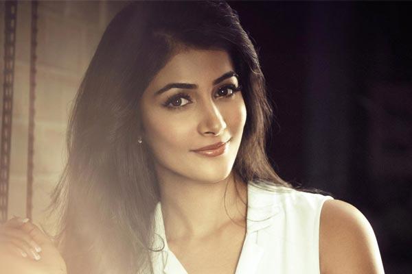 Pooja Hegde ups her glam quotient in Duvvada Jagannadham