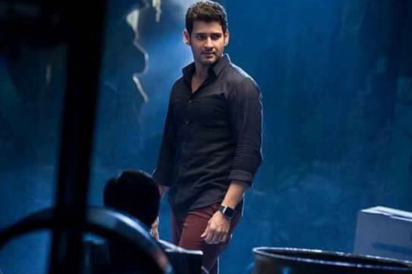 Makuta team busy working for Spyder