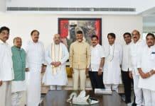 Amit Shah and Chandrababu Naidu discuss alliance