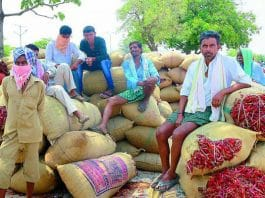 TRS government is giving farmers the cold shoulder