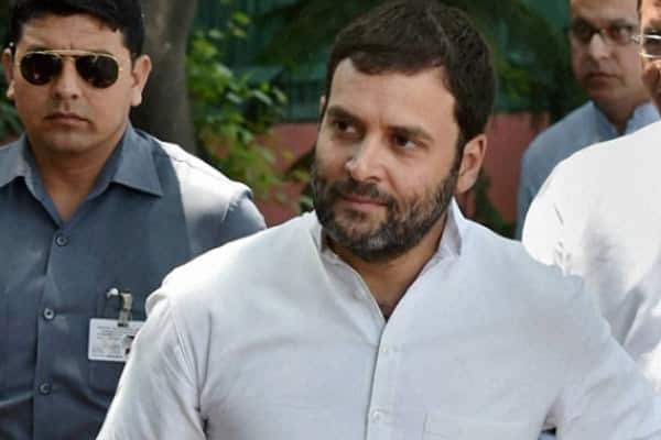 Rahul accepts defeat, congratulates Modi