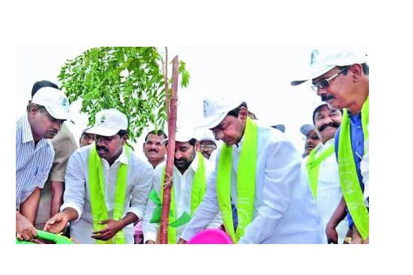 KCR launches Haritha Haram III in Karimnagar