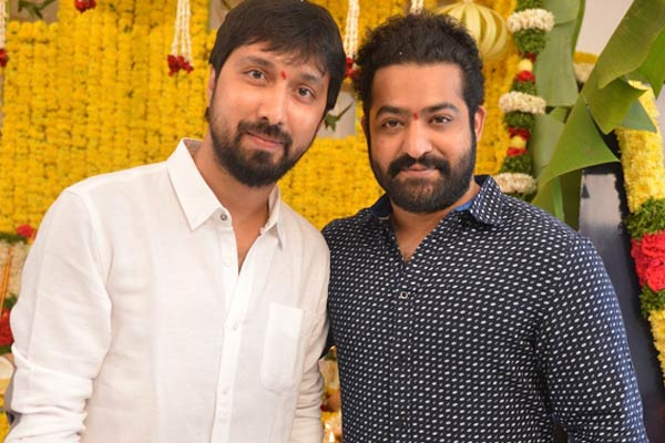 Is Bobby turning a liability for NTR ?