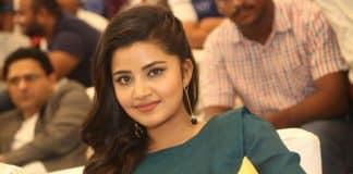 Anupama Parameswaran at Radio City Cine Awards