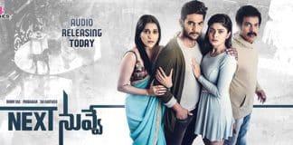Aadi's Next Nuvve Movie Review