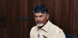 Tollywood biggies meet CM Chandrababu and extend support on SCS
