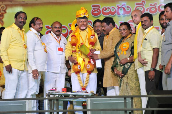 Mahanadu Attack on BJP, what could be the Chandra Babu Naidu's strategy for 2019