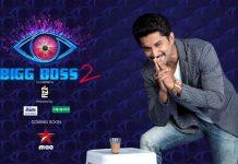 Star Maa's Big Boss Season 2 Host Poster