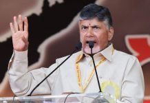 Chandrababu Naidu to contest from Mylavaram or Ponnur?