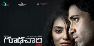 'Goodachari' Overseas Profit Loss Statement