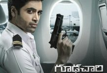 Goodachari Worldwide Closing Collections