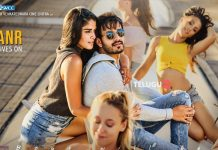 Mr. MAJNU first look poster and still