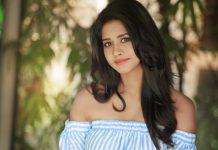 Nabha Natesh in Ravi Teja's Next