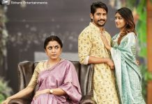 Sailaja Reddy Alludu 2 Days Collections