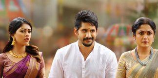 Shailaja Reddy Alludu pre release business
