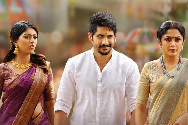 Shailaja Reddy Alludu Worldwide Pre-Release Business : Highest For Naga Chaitanya