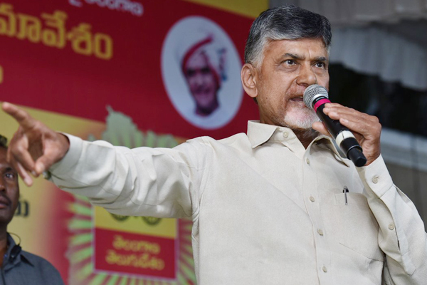 TDP chief leaves decision on poll alliance to Telangana unit
