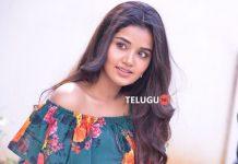 Anupama Parameswaran Interview Photos