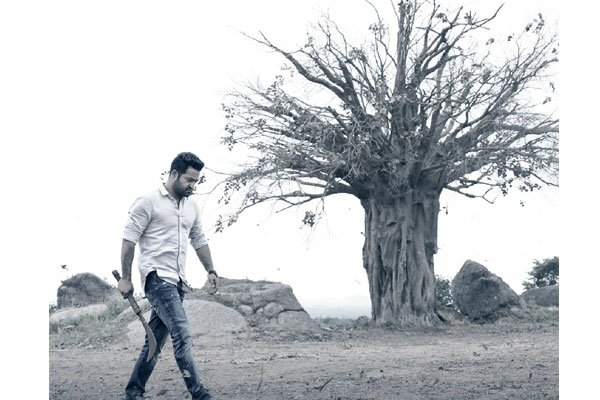Confident NTR and Trivikram going all out for promotions