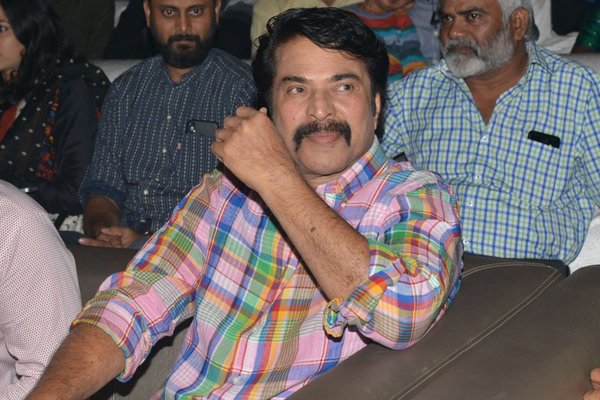 Why Mammootty took long gap in Tollywood?
