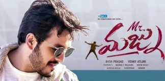 Mr. Majnu Worldwide Closing Collections