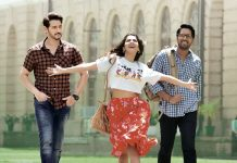 Maharshi Worldwide Theatrical Pre-Release Business