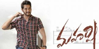 Maharshi Overseas Profit Loss Statement
