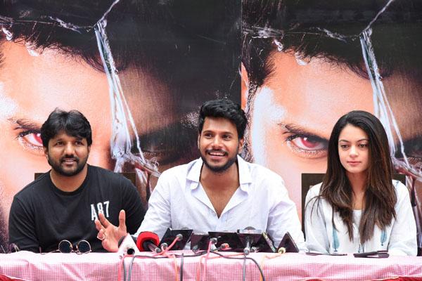 Ninu Veedani Needanu Nene Movie Success Celebrations