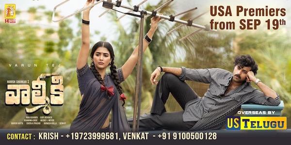 Valmiki overseas release by US Telugu