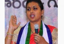 Roja crosses all limits to insult Pawan