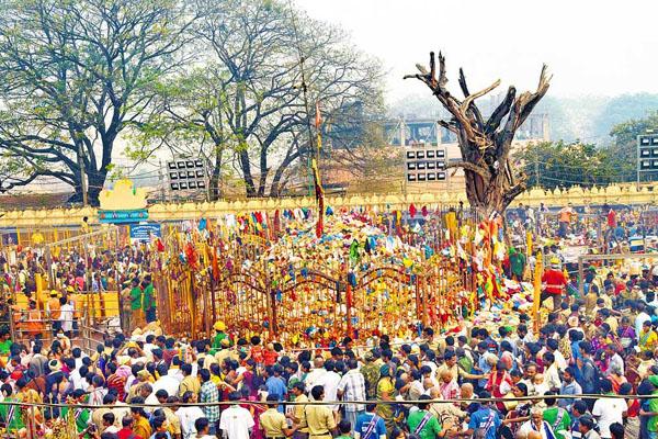 Lakhs descend on Telangana's Medaram for tribal fair