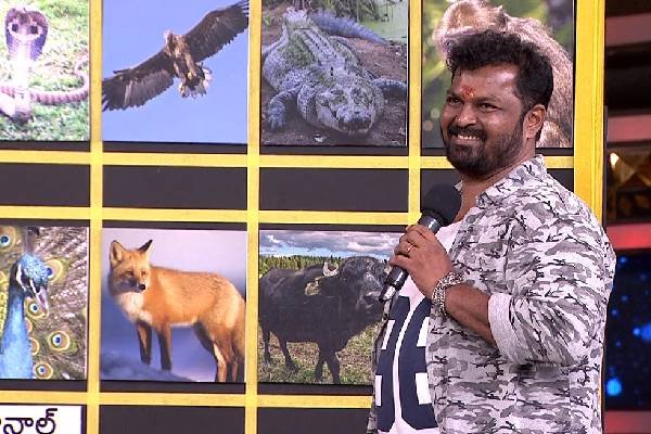 Bigg boss tidbits: Surya Kiran's excellent analysis on contestants