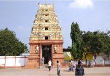 Govt begins works on building new chariot in Antarvedi temple