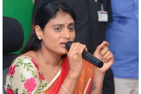 KCR also an outsider in Telangana: Sharmila