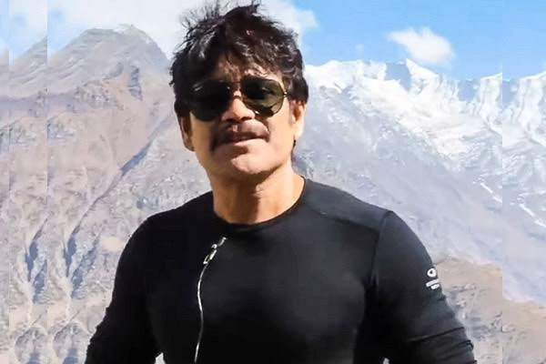 Wild Dog Is A Pucca Commercial Film: Nagarjuna