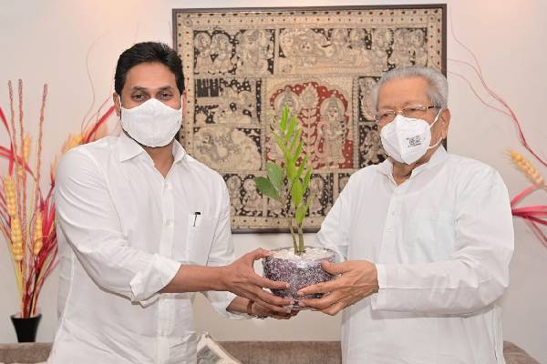 Jagan finally secures Governor's nod to nominate 4 MLCs!